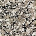 Granite Worktop Luna Pearl Sample